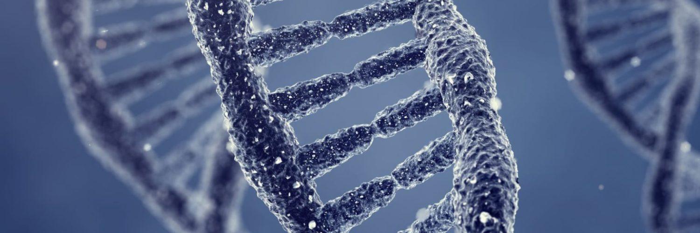 Genome Repair